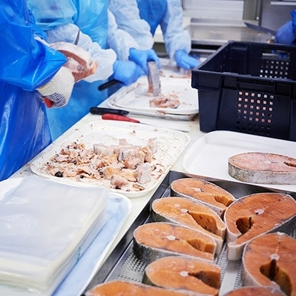Picture of FISH PROCESSING LINES COMPREHENSIVE SOLUTIONS